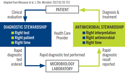 Role of Diagnostics in Stewardship for AMR