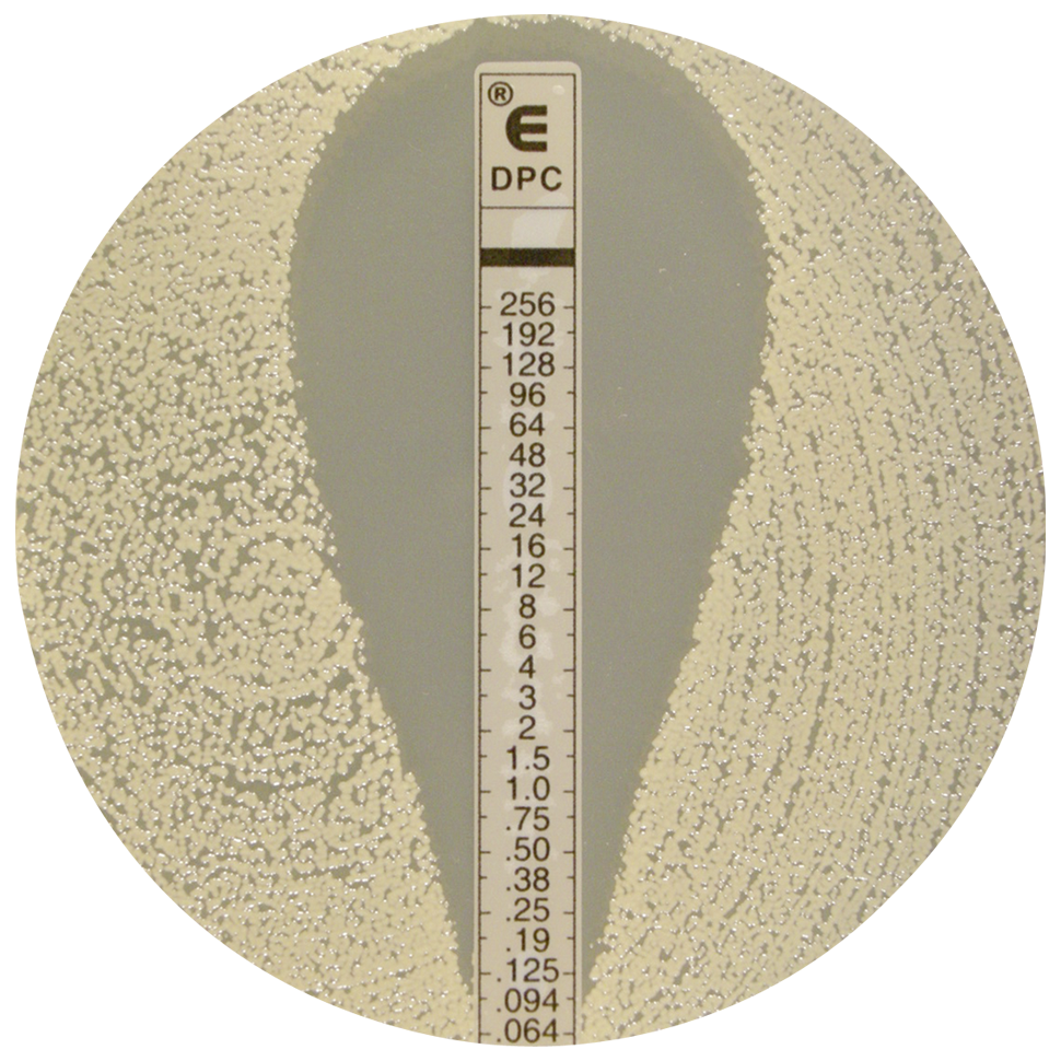 ETEST® : antibiotic gradient method